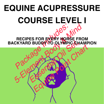 equine-acupressure-course-cover-2