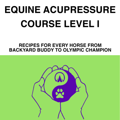 equine-acupressure-course-cover-standalone