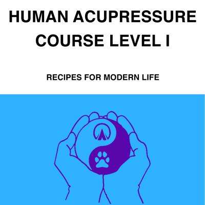 human-acupressure-course-cover-standalone